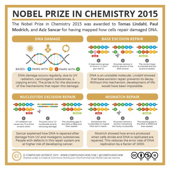 2015 Nobel Prize in Chemistry