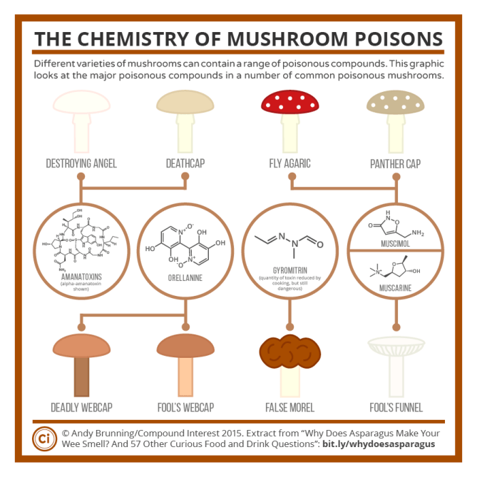 Chemistry of Mushrooms