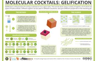 Molecular Cocktails- Gelification