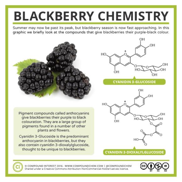 Blackberry Chemistry