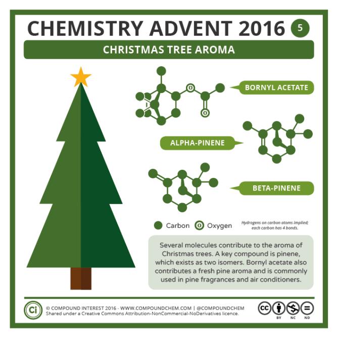 5 – Christmas Tree Aroma