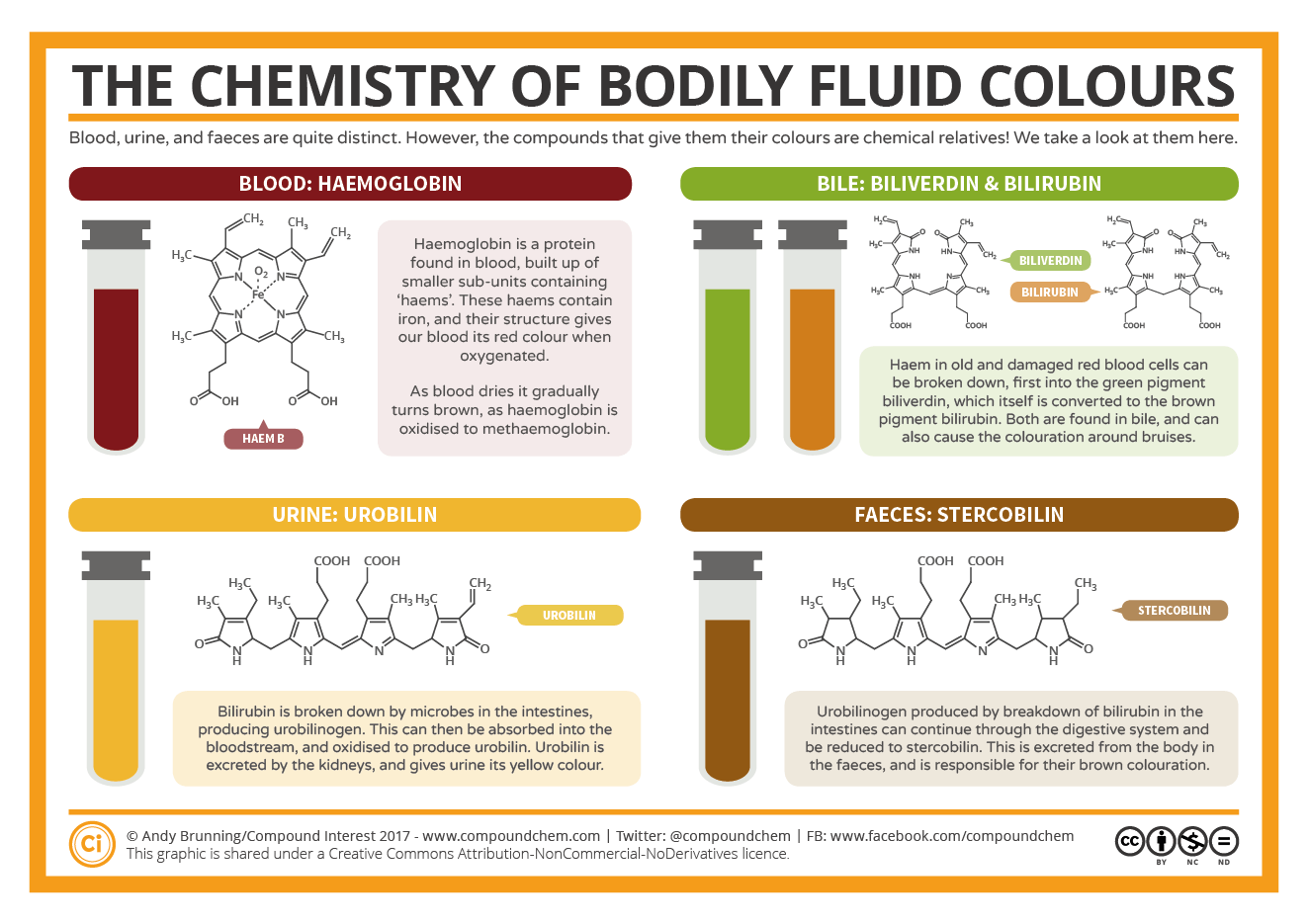 The Chemistry Of The Colours Of Bodily Fluids