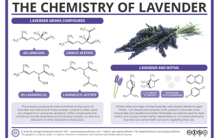 The Chemistry of Lavender & How it Repels Moths