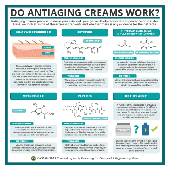 C&EN - Anti-Wrinkle Cream Chemistry