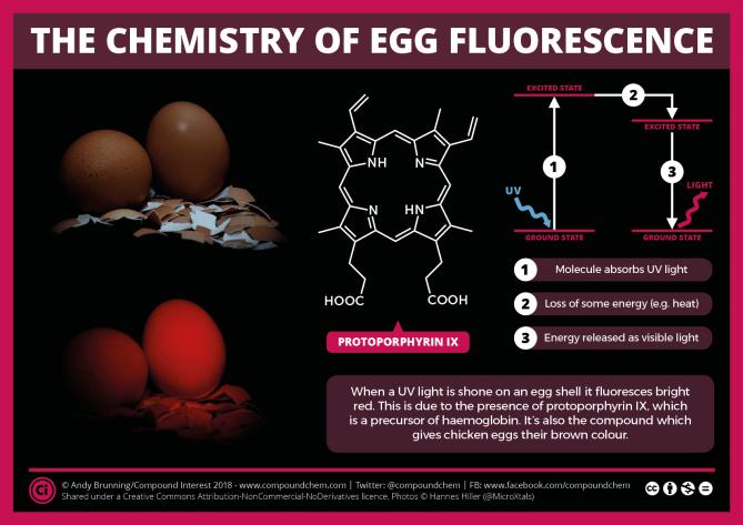The Chemistry of Egg Fluorescence