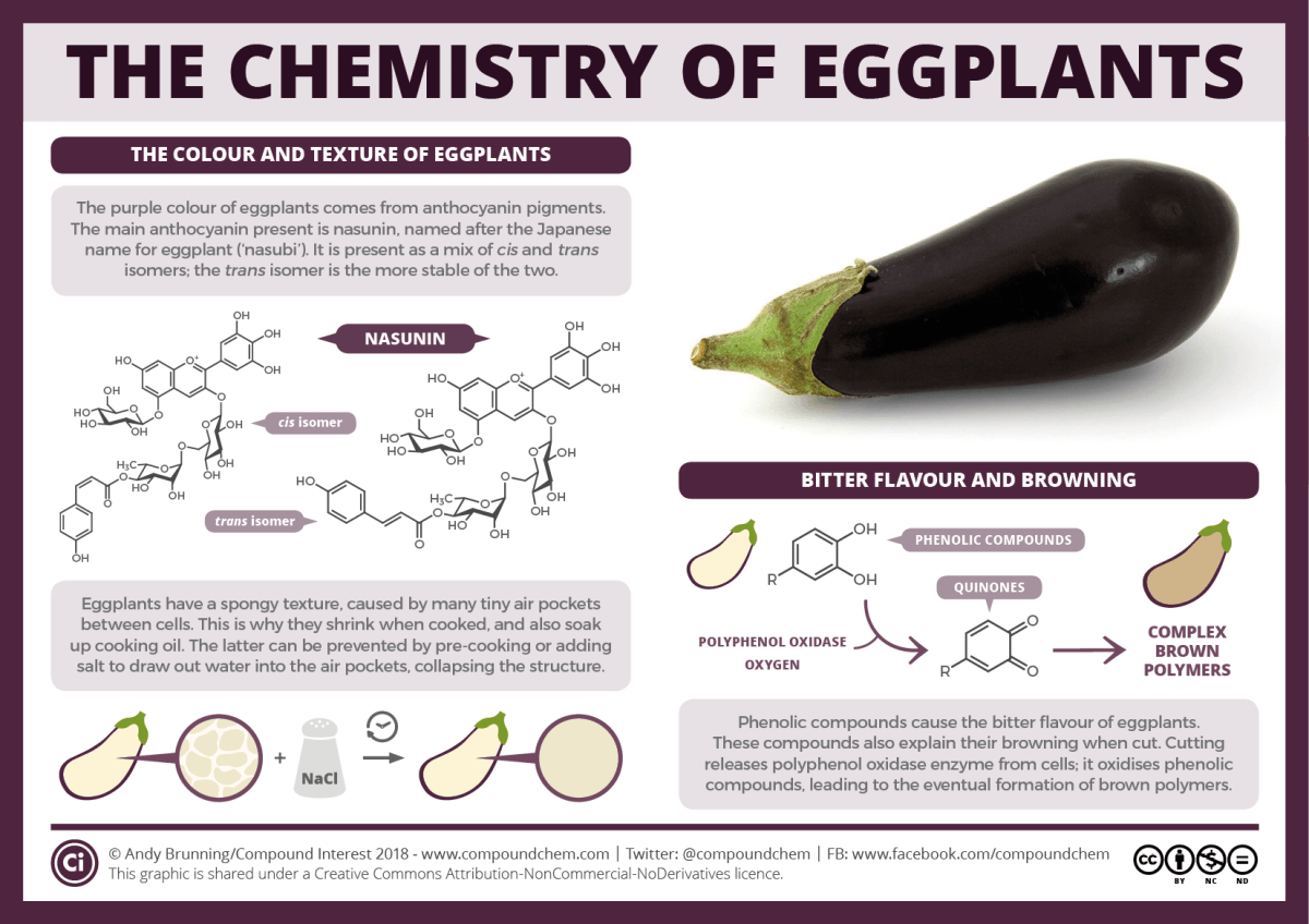 chemistry of eggplants v2