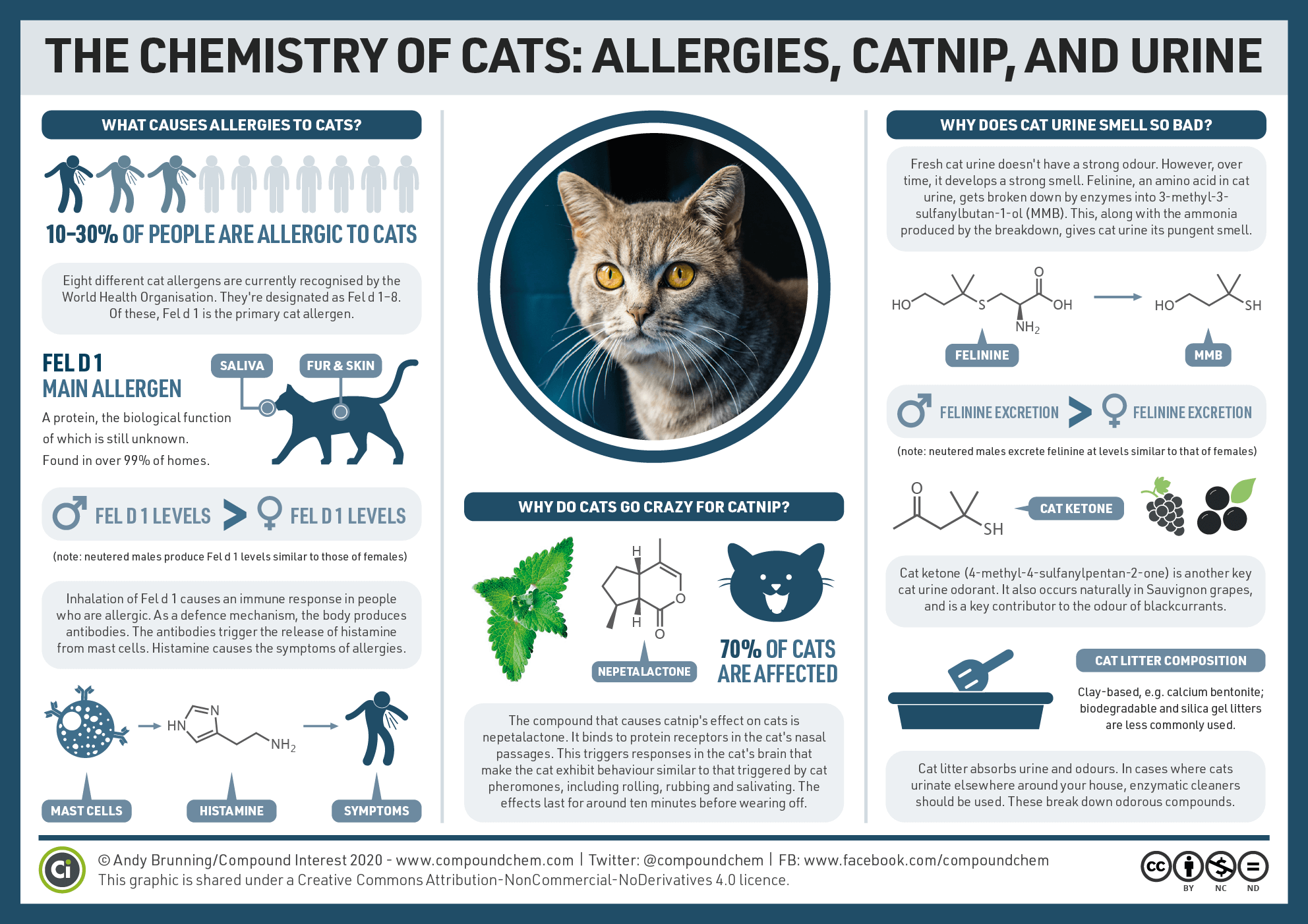The chemistry of cats: Allergies, catnip and urine – Compound Interest