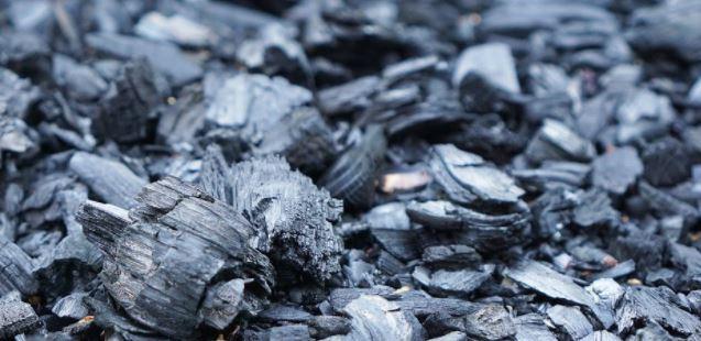 Mejor carbon para barbacoa