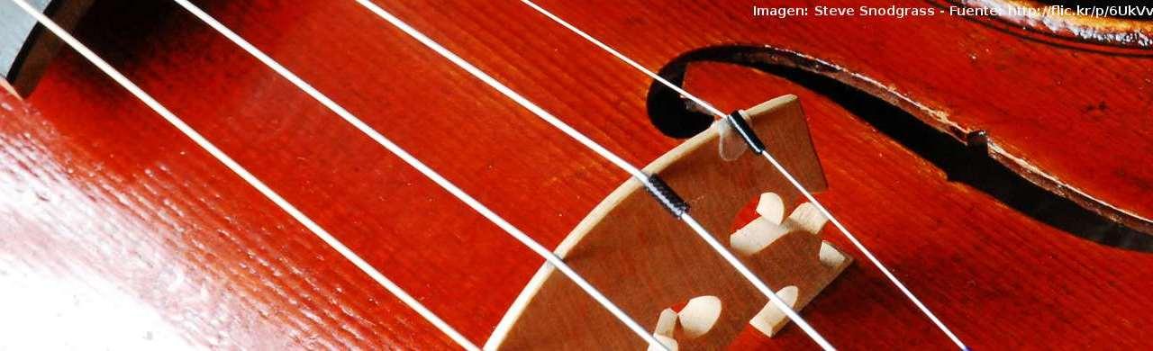 Partes del violín: Localización y funciones