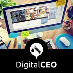Treinamento Digital CEO