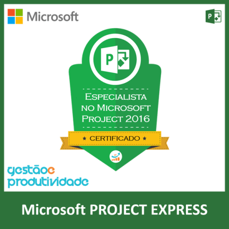 rsz_ms_project_express.pngMicrosoft Project Express