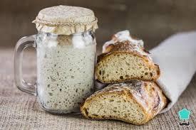 curso fermentação de pão