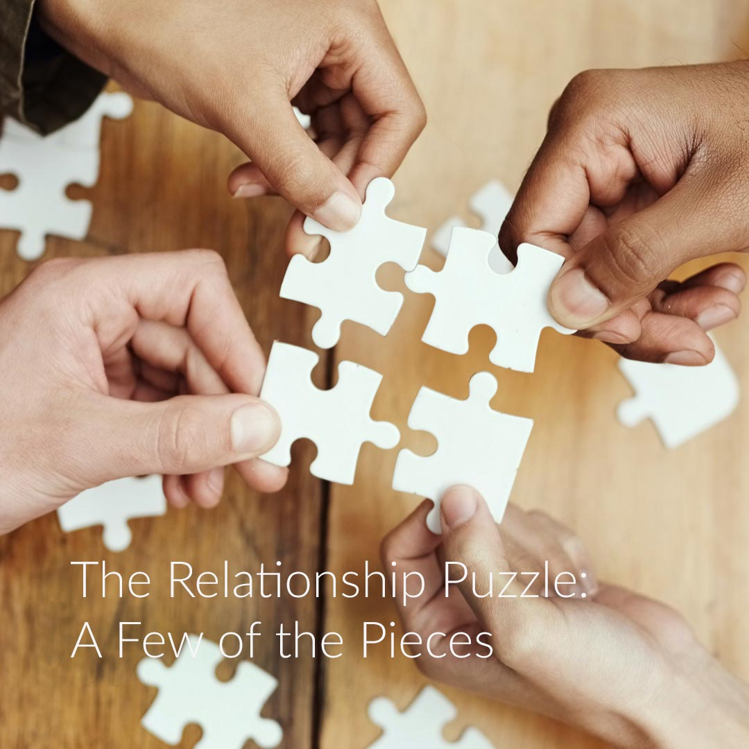 The Relationship Puzzle: A Few of the Pieces
