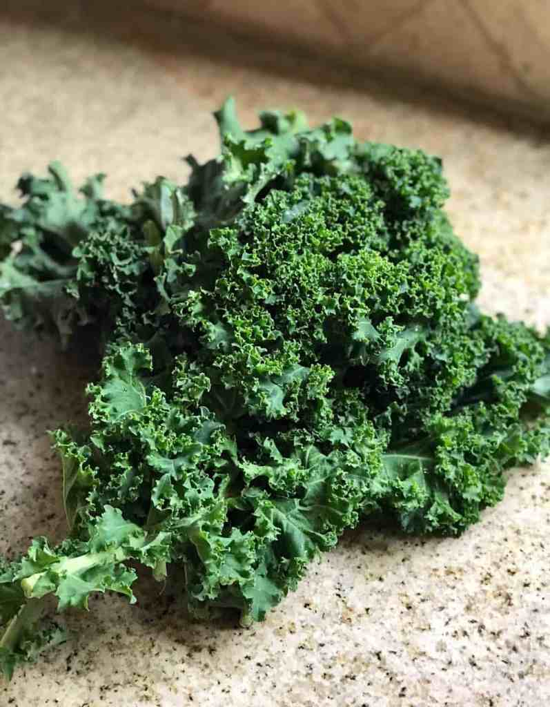 Side view of a bunch of curly kale