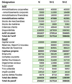 Exemple De Previsionnel Financier Bilan Compta Facile