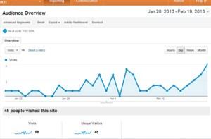 OnMaternityBelt's Analytics