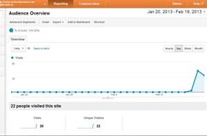 NicheSiteJournal Visitor Numbers