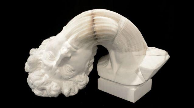Honeycomb Paper Sculpture