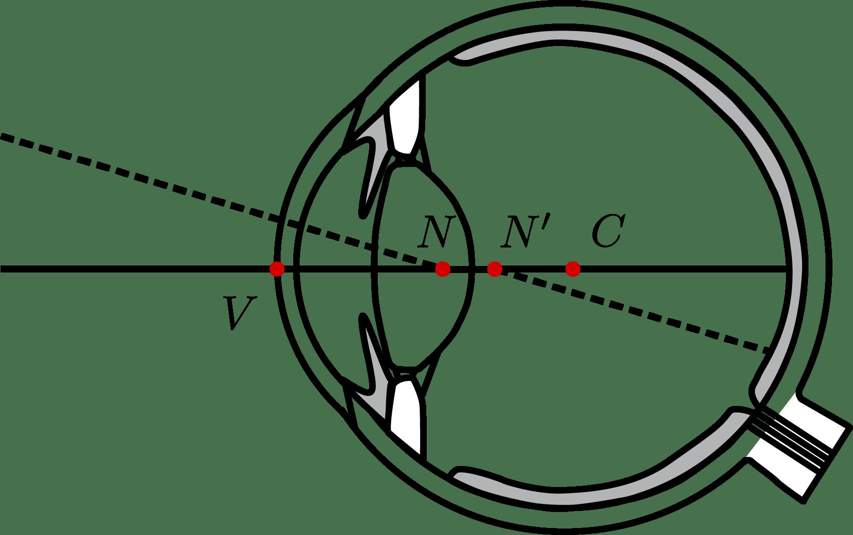 Computational Imaging Gaze Contingent Ocular Parallax