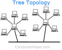 What is a Tree Topology?