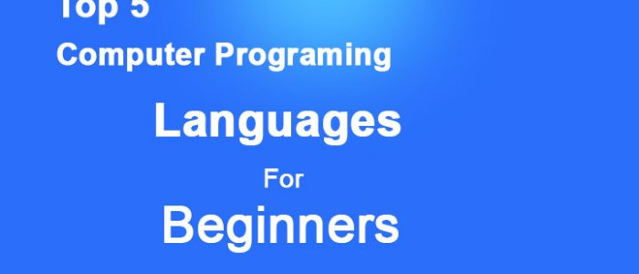 Top 5 Website To Learn Computer Programming Languages For Beginners