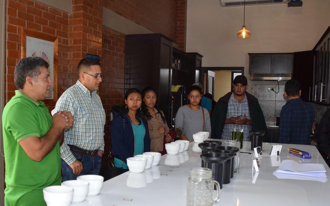 Technoserve y COMSA desarrollaran Escuela de Conocimientos Básicos de Café