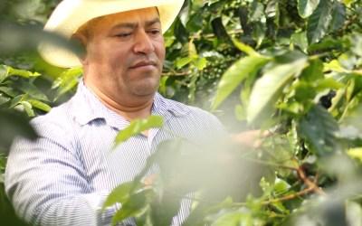 Socio de COMSA participará de subasta de café