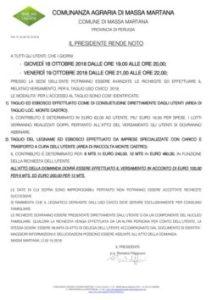 thumbnail of MASSA-2018_01-AVVISO-TAGLIO-USOCIVICO
