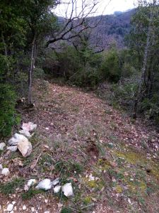 thumbnail of foto sentiero per montemartano