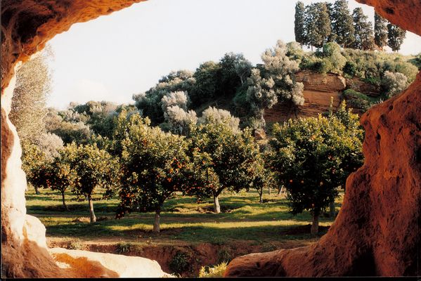 Giardino della Kolymbetra Valle dei Templi Agrigento Musei Scuola