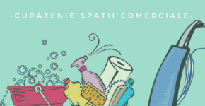 Real Cleaning servicii de curatenie Bucuresti