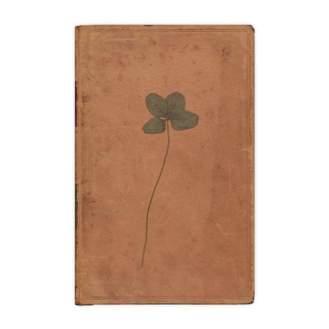 Encontrados en libros - Trébol de cuatro hojas