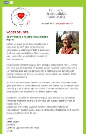 Boletín Voces del SEA