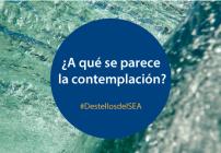 ¿A qué se parece la contemplación? | Destellos del SEA