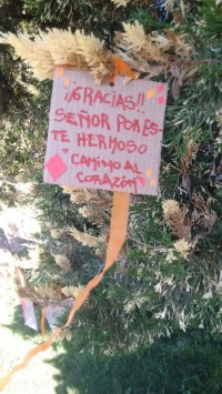 escuela_ninos_san-agustin-filial_santa_fe_2016-7