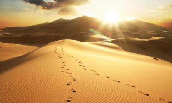 Desierto Diurno