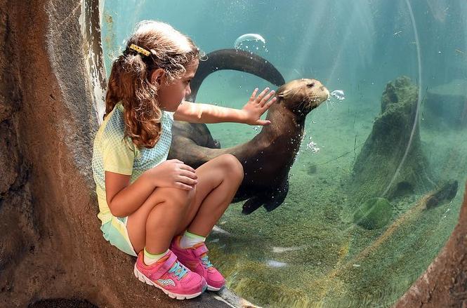 ZoológicoDeMiami2