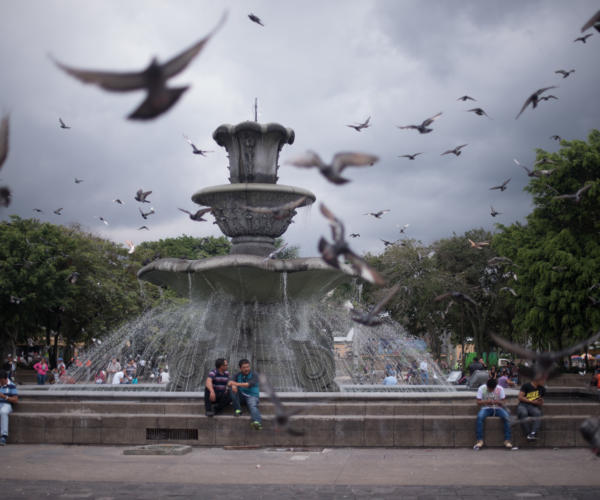 "Doves fly around the fountain in ""La Plaza de la constitución"". Photo: Santiago Billy/Comvite"