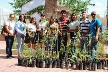 Plantan 100 Arboles En Plantel Conalep Agua Prieta