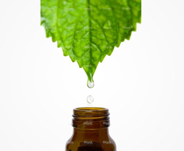 About Concentrated Aloe Corporation Raw Botanical Materials