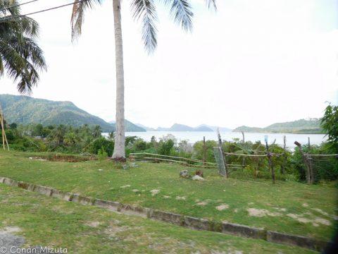 島からの光景