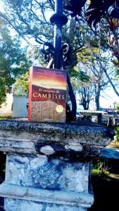 Provincia-costarricense-se-lleno-de-libros-4