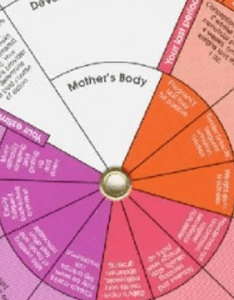 How to calculate ovulation for irregular menstrual period also rh conceiveeasy
