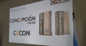Cementos Concepción en breve sera una realidad