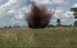 Explosión. El operativo fue de la Senad y de la FTC.