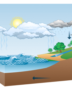 Diagram water cycle also drawing illustration program to make flow chart basic rh conceptdraw