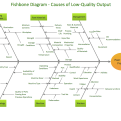 Fishbone Diagram In Software Testing What Color Is Your Parachute Flower Using Diagrams For Problem Solving Cause And