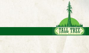 tall tree music festival