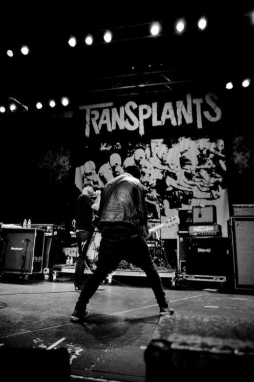 Transplants_MFP_28