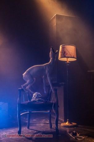 Skinny Puppy @ The Commodore Ballroom - February 28th 2